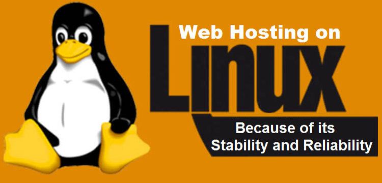 Benefits Of Using cPanel For Linux Shared Hosting India